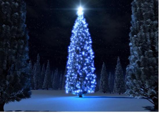 christmas tree light up event